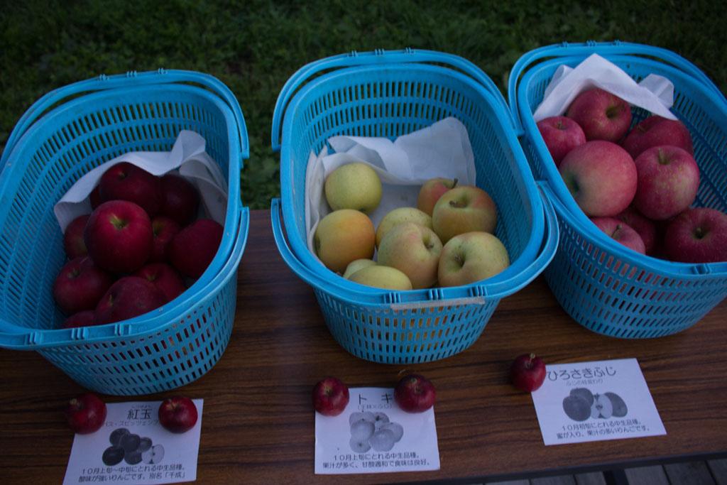 りんご3種で生ジュース